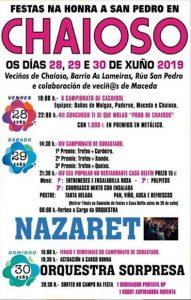 Cartel Fiesta San Pedro 2019